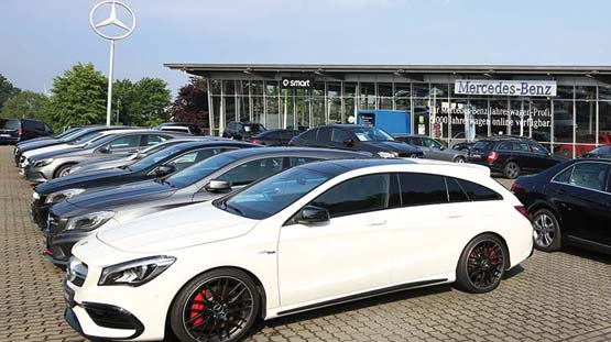 Mercedes Weitkamp